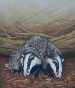 cath-inglis-badgers